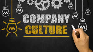 Understanding the Company's culture (in detail)