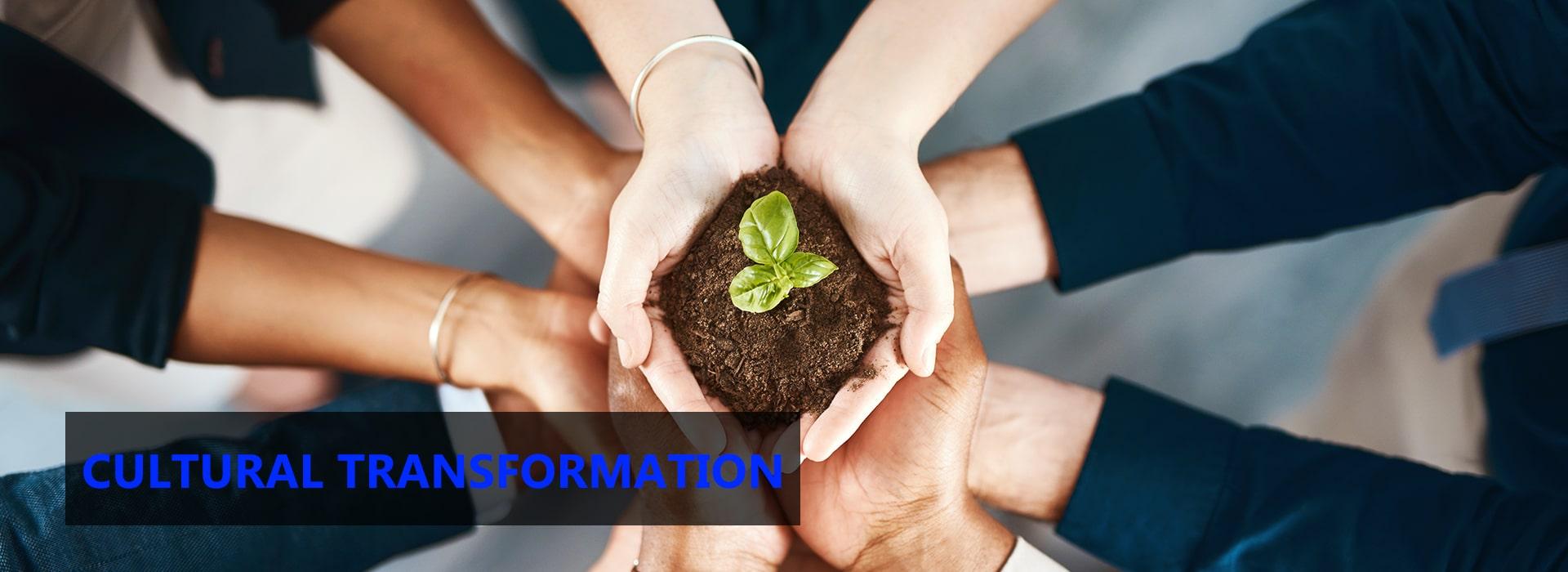 cultural-transformation